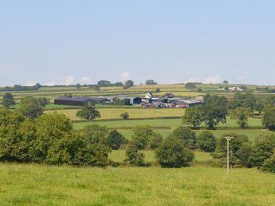 Green Hedge Energy Barn